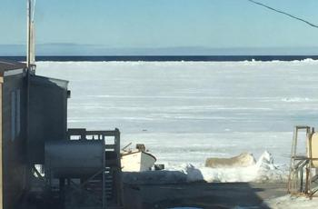 A view of the floe edge from Hall Beach. With school over for the summer, many community members were out on the land enjoying the Arctic spring
